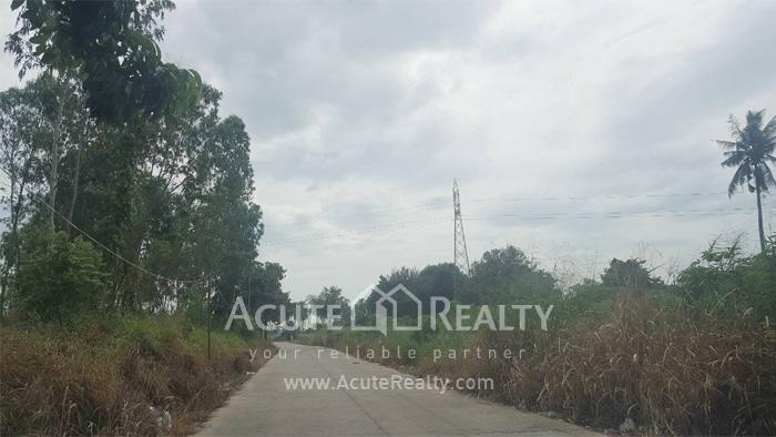 Land  for sale Sriracha - Nong Kho 13 Rd. image3