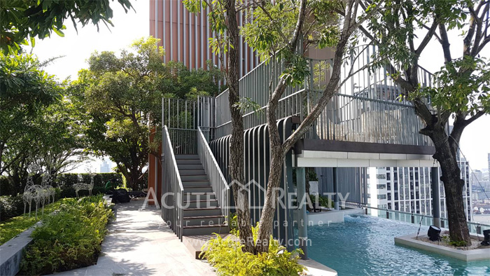 Condominium  for rent Whizdom Avenue Ratchada-Ladprao Laoprao Ratchada image13