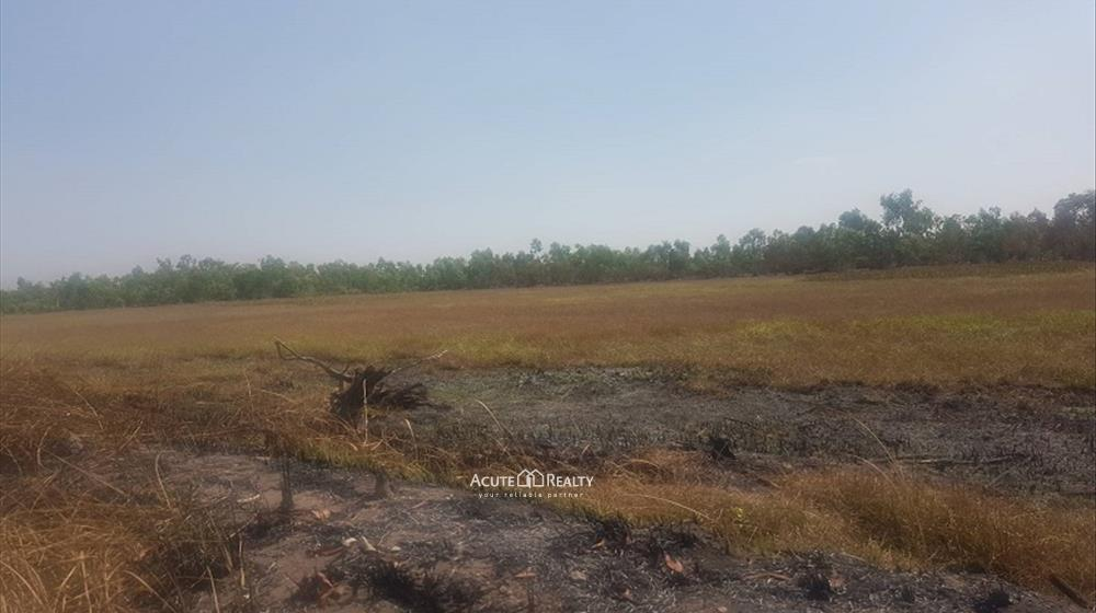 Land  for sale Bang Pla Kot image2
