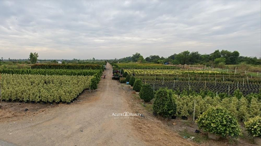 Land  for sale Bang Pla Kot image5