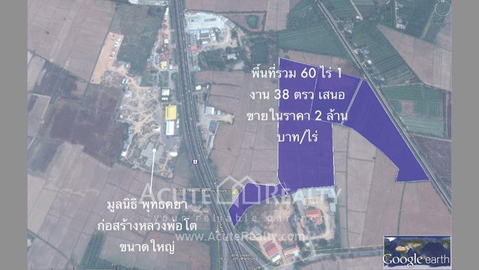 土地  for sale Na Yang Subdistrict, Phetkasem Road. image1