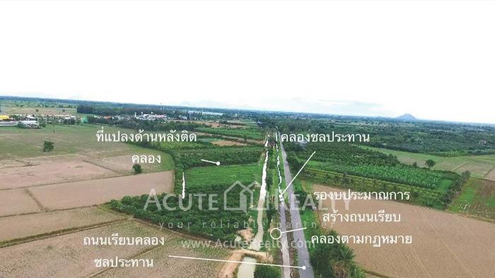 土地  for sale Na Yang Subdistrict, Phetkasem Road. image5
