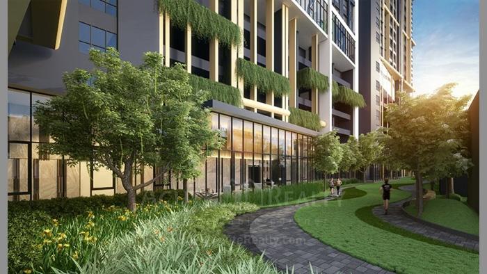 Condominium  for sale Niche Mono Sukhumvit-Bearing Sukhumvit-Bearing image7