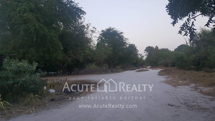 Land  for sale Maptapud-Hadsaitong Rd. Sukhumvit38 Alley, Soi Thap Phaya, Mueang Rayong. image0