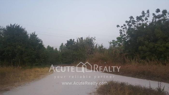 Land  for sale Maptapud-Hadsaitong Rd. Sukhumvit38 Alley, Soi Thap Phaya, Mueang Rayong. image1