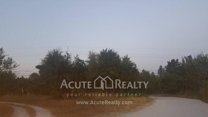 Land  for sale Maptapud-Hadsaitong Rd. Sukhumvit38 Alley, Soi Thap Phaya, Mueang Rayong. image2