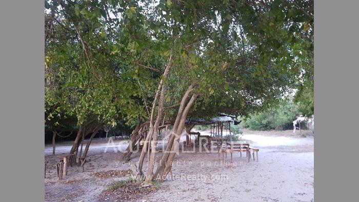 Land  for sale Maptapud-Hadsaitong Rd. Sukhumvit38 Alley, Soi Thap Phaya, Mueang Rayong. image3