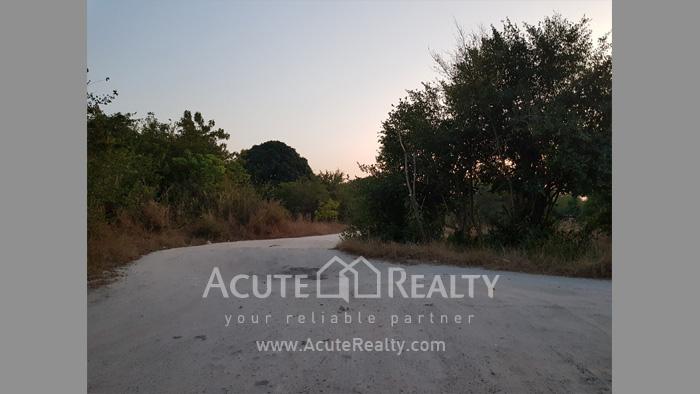 Land  for sale Maptapud-Hadsaitong Rd. Sukhumvit38 Alley, Soi Thap Phaya, Mueang Rayong. image4
