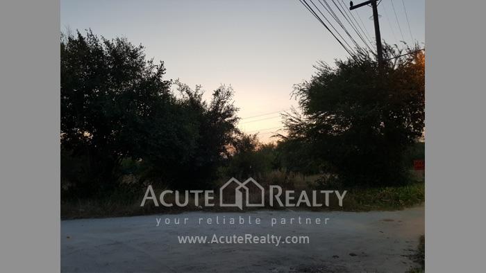 Land  for sale Maptapud-Hadsaitong Rd. Sukhumvit38 Alley, Soi Thap Phaya, Mueang Rayong. image5
