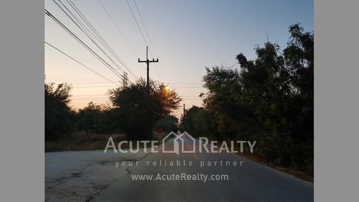 Land  for sale Maptapud-Hadsaitong Rd. Sukhumvit38 Alley, Soi Thap Phaya, Mueang Rayong. image6