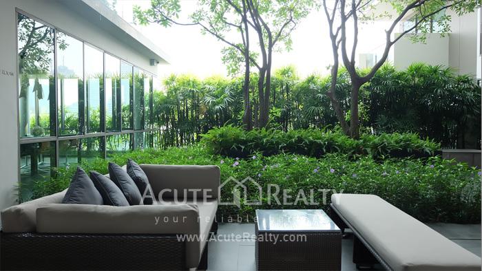 Condominium  for rent Aequa Sukhumvit 49 Sukhumvit 49 image10