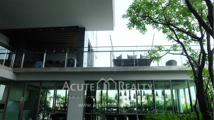 Condominium  for rent Aequa Sukhumvit 49 Sukhumvit 49 image11