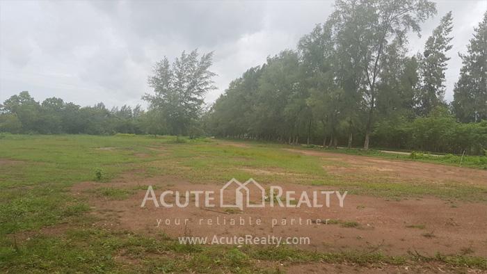 Land  for sale Chaloem Burapha Chonlathit Rd. image2