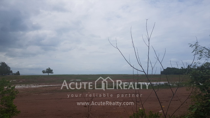 Land  for sale Chaloem Burapha Chonlathit Rd. image4