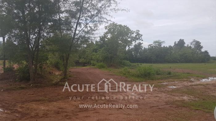 Land  for sale Chaloem Burapha Chonlathit Rd. image5