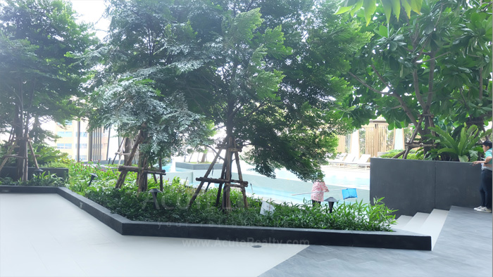 Condominium  for sale & for rent Niche Pride Thonglor- Phetchaburi Thonglor-Petchaburi image8