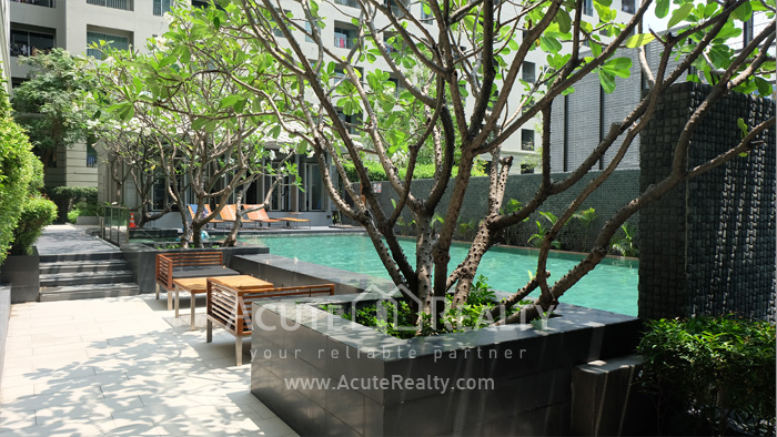 Condominium  for sale & for rent The Seed Memories Siam Rama 1 Kasemsan 1 image10