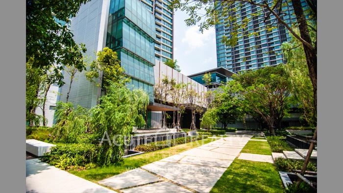 Condominium  for rent 333 Riverside Prachachoen image2