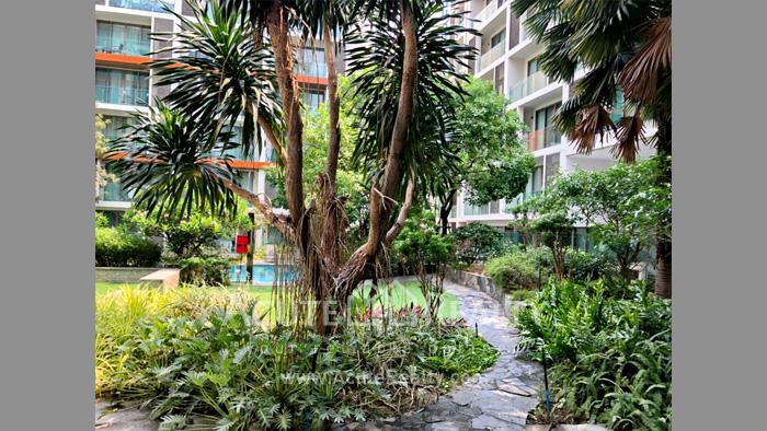 Condominium  for sale The Nimmana Nimman Road. image17