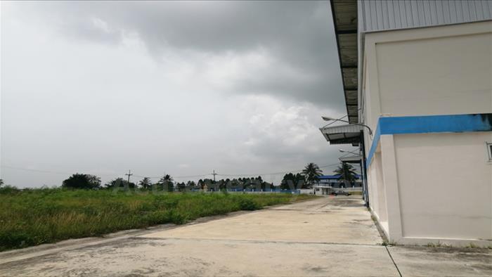 土地, 工厂  for sale 331 Road, Pin Thong 3, Nong Kham, Sriracha. image10