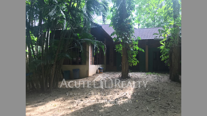 House, Land  for sale & for rent Rong Wua Daeng image1