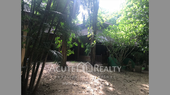 House, Land  for sale & for rent Rong Wua Daeng image2