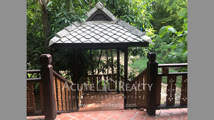 House, Land  for sale & for rent Rong Wua Daeng image29