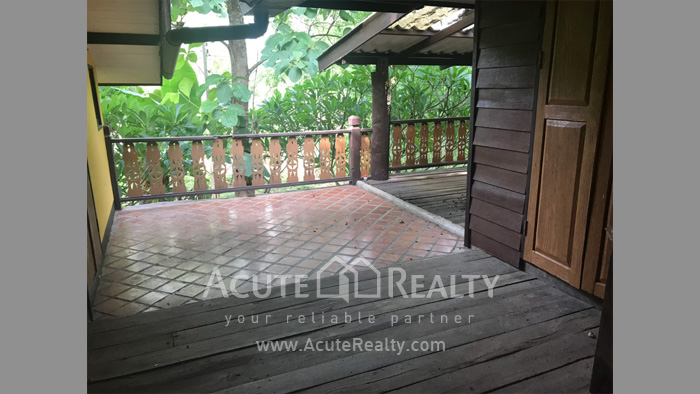 House, Land  for sale & for rent Rong Wua Daeng image38