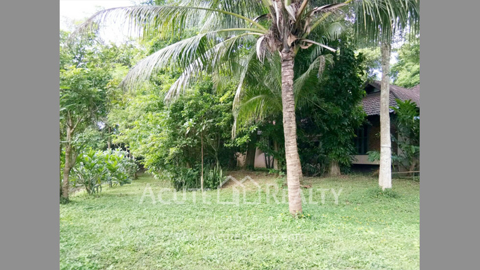 House, Land  for sale & for rent Rong Wua Daeng image43