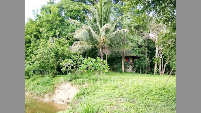 House, Land  for sale & for rent Rong Wua Daeng image44