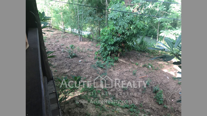 House, Land  for sale & for rent Rong Wua Daeng image45