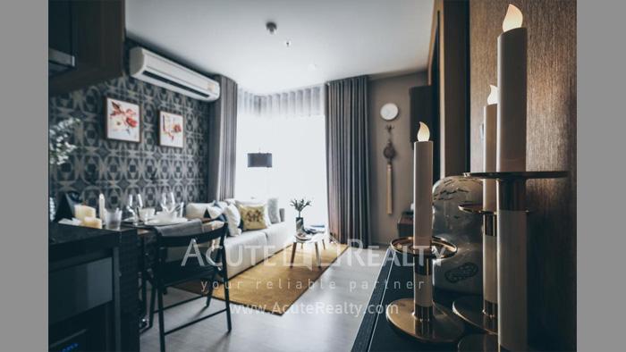 Condominium  for sale & for rent Rhythm Asoke Asoke image1