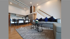 condominium-for-rent-siamese-exclusive-sukhumvit-31