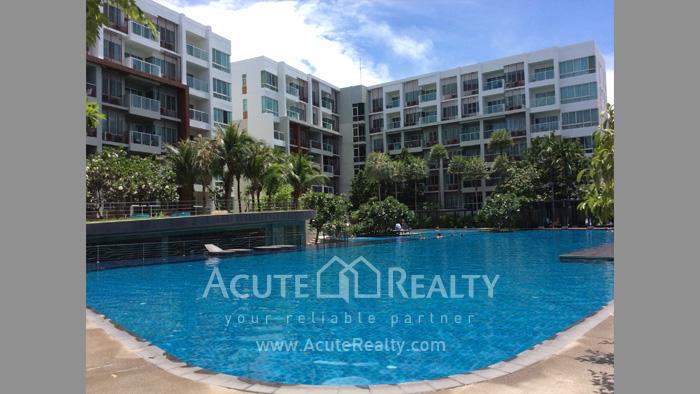 Condominium  for sale The Seacraze Hua Hin Hua Hin image0
