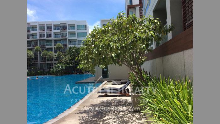 Condominium  for sale The Seacraze Hua Hin Hua Hin image1
