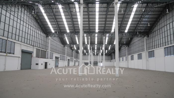 Warehouse  for rent Sukhumvit 77 Rd (Soi Onnut) image2