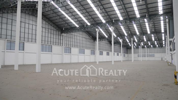 Warehouse  for rent Sukhumvit 77 Rd (Soi Onnut) image11