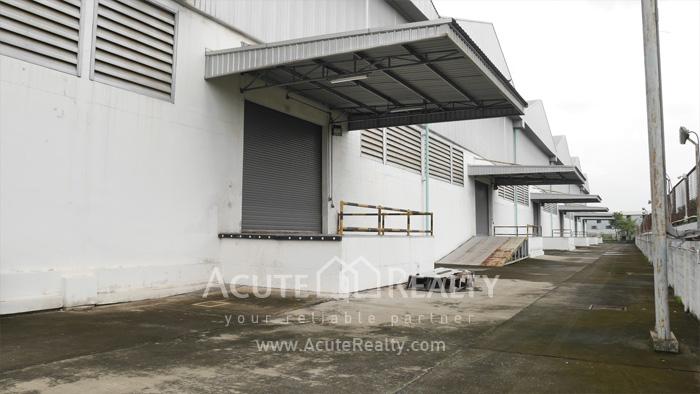 Warehouse  for rent Sukhumvit 77 Rd (Soi Onnut) image13