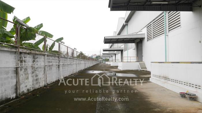 Warehouse  for rent Sukhumvit 77 Rd (Soi Onnut) image14
