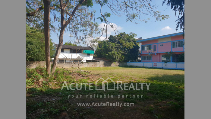 Land  for sale Chang Phuak image4