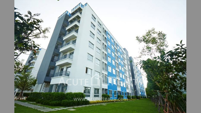 condominium-for-sale-for-rent-the-kith-tiwanon