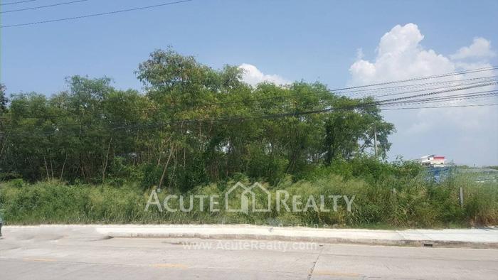 Land  for rent Soi Nartmontasevee 13, Phaya Satcha Rd. image0