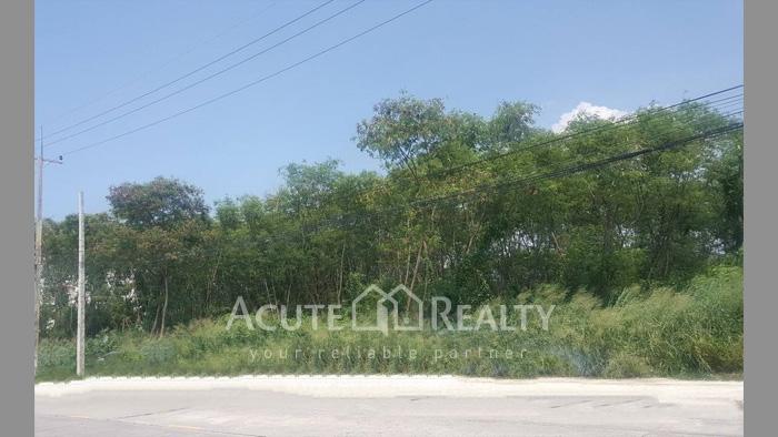 Land  for rent Soi Nartmontasevee 13, Phaya Satcha Rd. image1