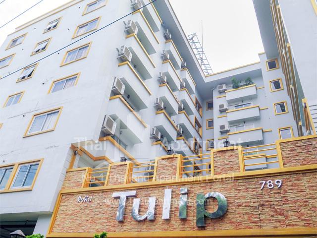Tulip Apartment image 1