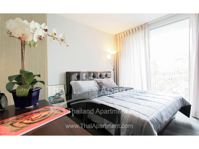 Click Denim Apartment image 3
