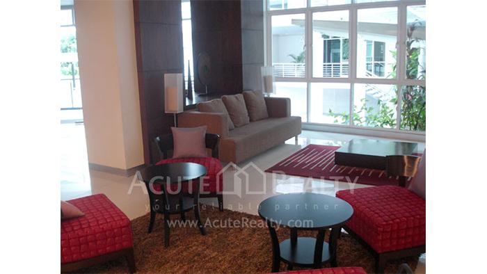 Condominium  for sale & for rent Avenue 61 Sukhumvit 61 image16