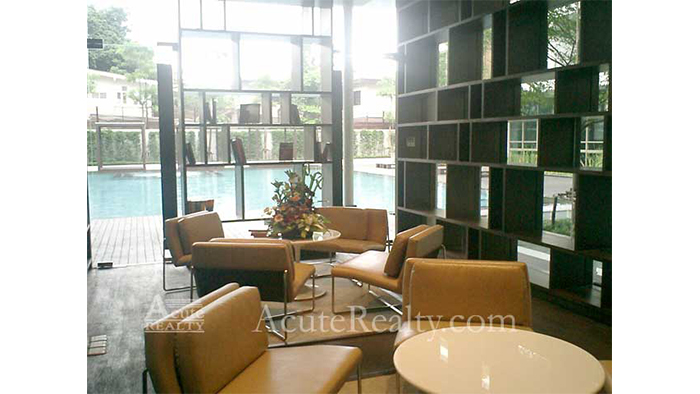Condominium  for sale & for rent Ficus Lane Prakanong image11