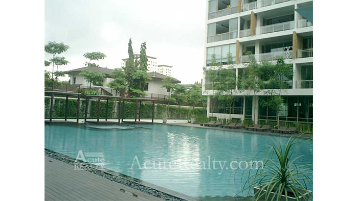 Condominium  for sale & for rent Ficus Lane Prakanong image15
