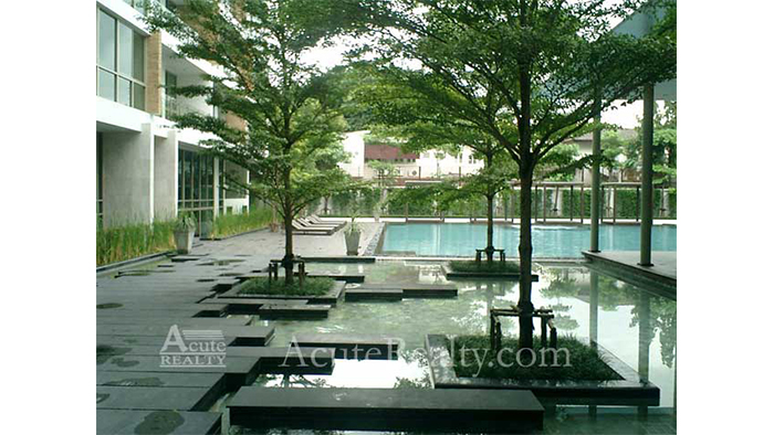 Condominium  for sale & for rent Ficus Lane Prakanong image20