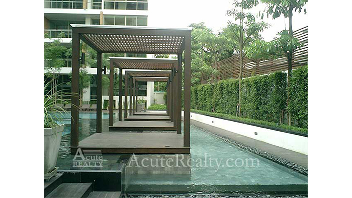 Condominium  for sale & for rent Ficus Lane Prakanong image23